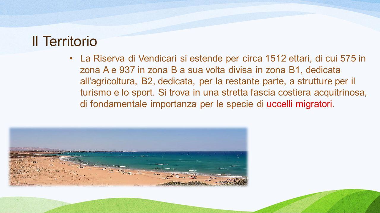 Il Territorio La Riserva di Vendicari si estende per circa 1512 ettari, di cui 575 in zona A e 937 in zona B a sua volta divisa in zona B1, dedicata a