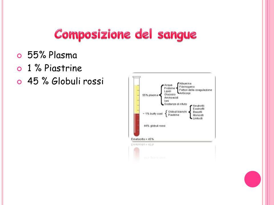 55% Plasma 1 % Piastrine 45 % Globuli rossi