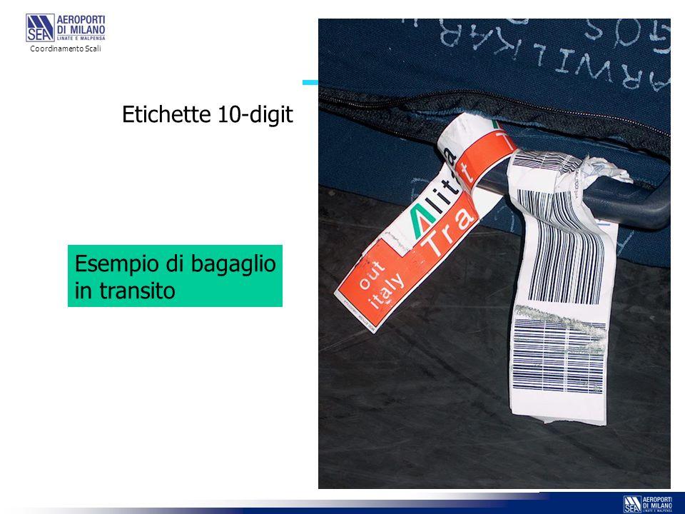 Etichette 10-digit Esempio di bagaglio in transito Coordinamento Scali