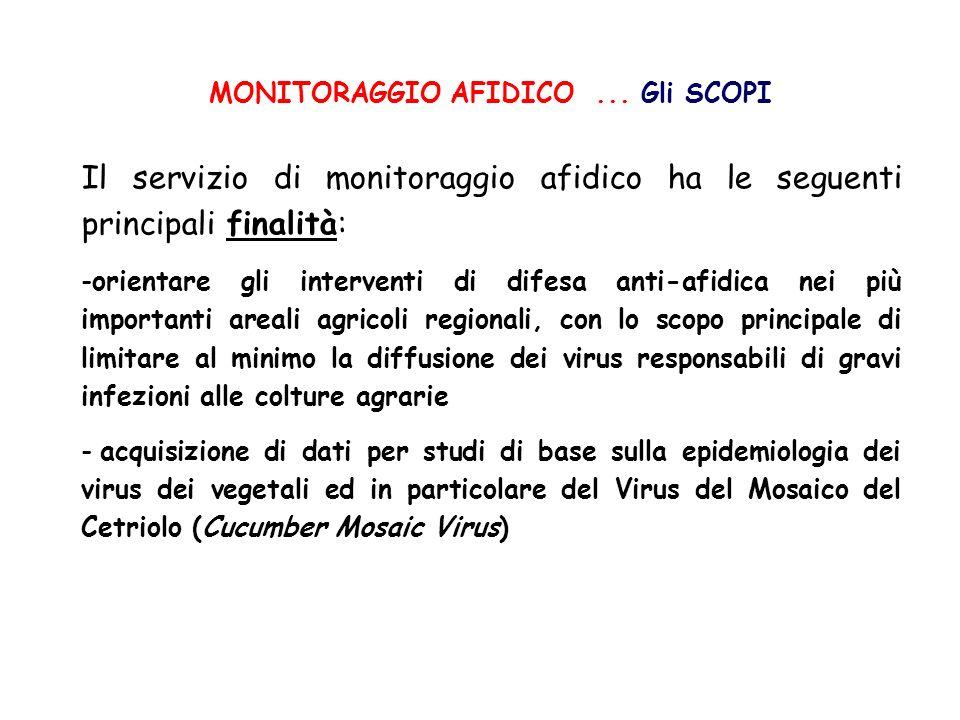 MONITORAGGIO AFIDICO... Gli SCOPI Il servizio di monitoraggio afidico ha le seguenti principali finalità: -orientare gli interventi di difesa anti-afi