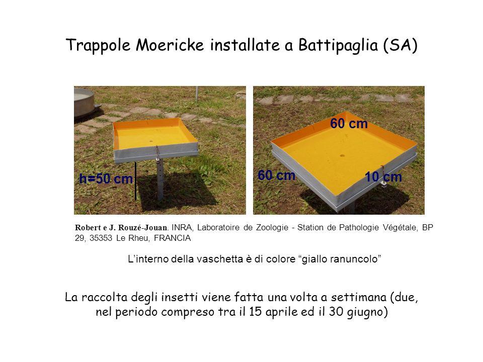 h=50 cm 60 cm 10 cm 60 cm La raccolta degli insetti viene fatta una volta a settimana (due, nel periodo compreso tra il 15 aprile ed il 30 giugno) Trappole Moericke installate a Battipaglia (SA) Linterno della vaschetta è di colore giallo ranuncolo Robert e J.