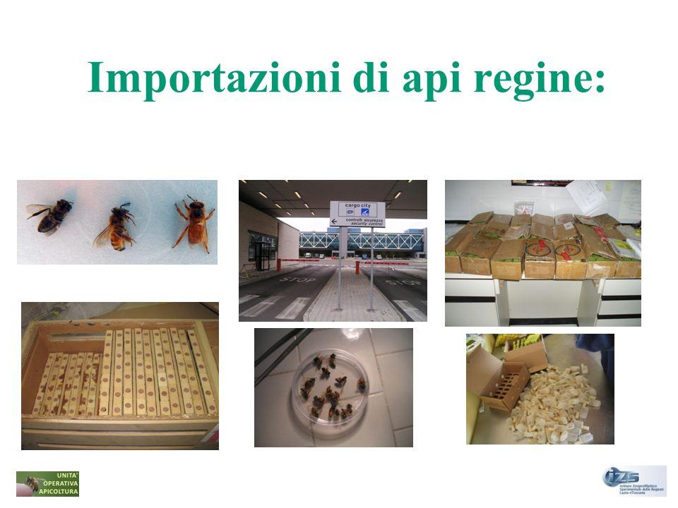 Principali Paesi esportatori in Italia: Argentina, Australia, Cina, Nuova Zelanda, Uruguay Misure cautelari da adottare nei casi dimportazione di api regine importate da Paesi terzi nel territorio nazionale: - la Ordinanza Ministeriale del Ministero della Salute del 20 aprile 2004; - il Regolamento UE 206/2010; -la Decisione N.