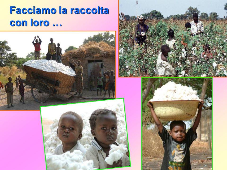 I bambini aiutiamo pure ai nostri genitori … Andiamo assieme a loro in campagna per seminare …