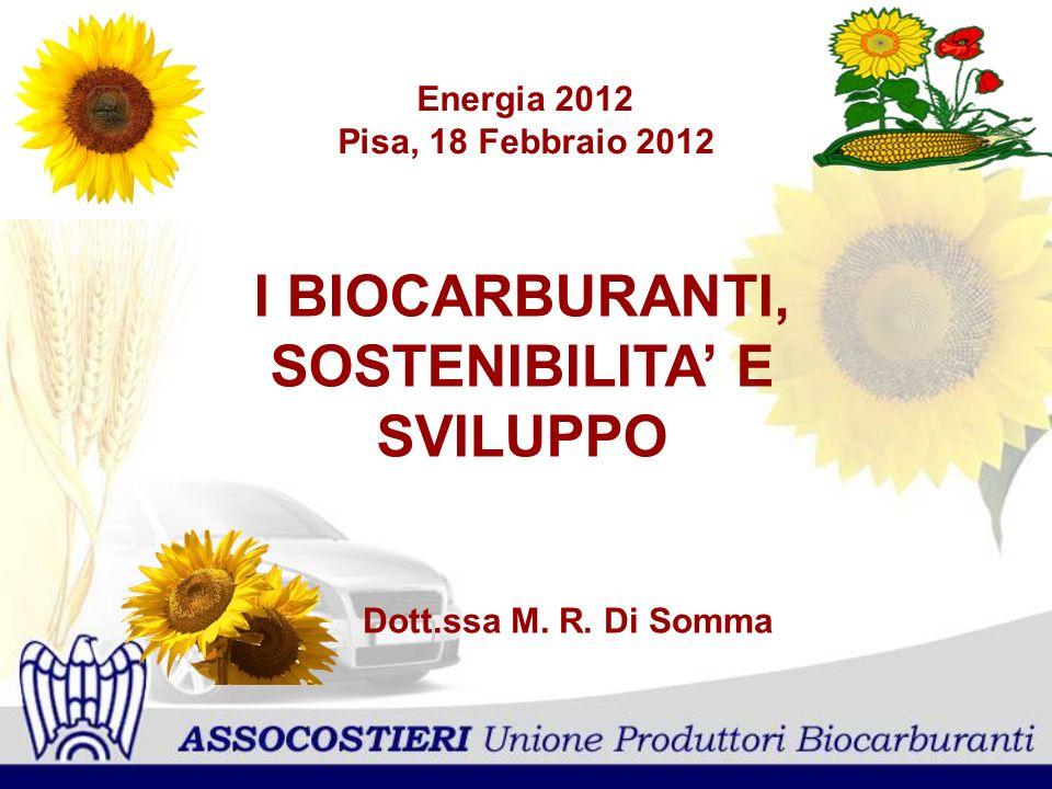 Energia 2012 Pisa, 18 Febbraio 2012 I BIOCARBURANTI, SOSTENIBILITA E SVILUPPO Dott.ssa M. R. Di Somma