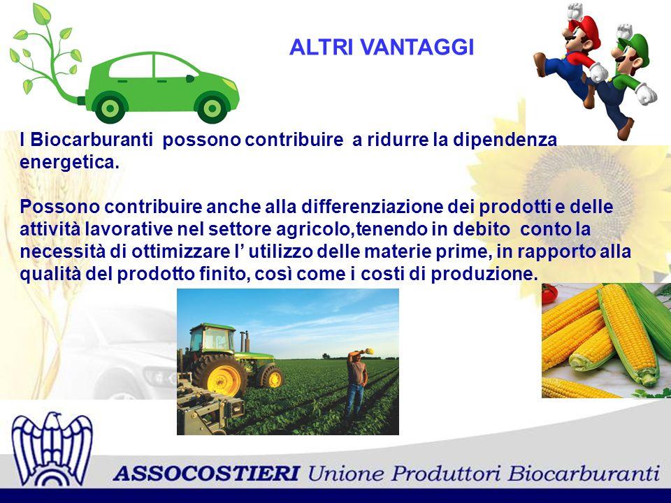ALTRI VANTAGGI I Biocarburanti possono contribuire a ridurre la dipendenza energetica. Possono contribuire anche alla differenziazione dei prodotti e
