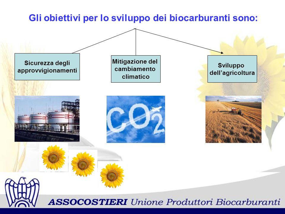 Gli obiettivi per lo sviluppo dei biocarburanti sono: Sicurezza degli approvvigionamenti Mitigazione del cambiamento climatico Sviluppo dellagricoltur