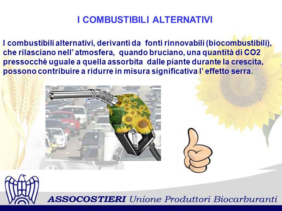 I COMBUSTIBILI ALTERNATIVI I combustibili alternativi, derivanti da fonti rinnovabili (biocombustibili), che rilasciano nell atmosfera, quando brucian