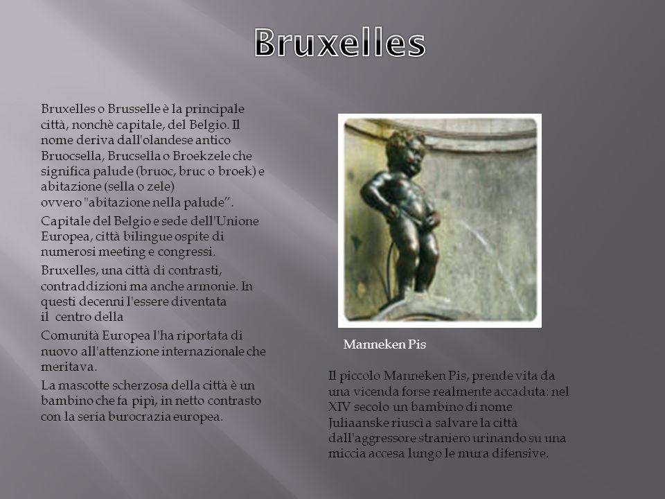 . Bruxelles o Brusselle è la principale città, nonchè capitale, del Belgio. Il nome deriva dall'olandese antico Bruocsella, Brucsella o Broekzele che