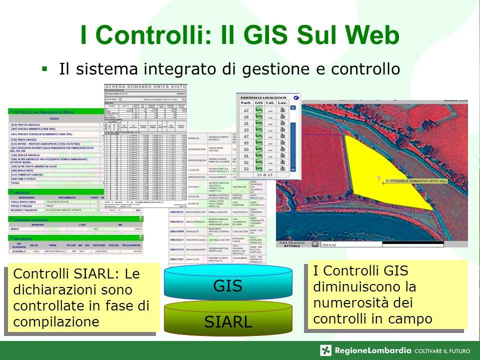 I Controlli: Il GIS Sul Web Il sistema integrato di gestione e controllo SIARL GIS Controlli SIARL: Le dichiarazioni sono controllate in fase di compi