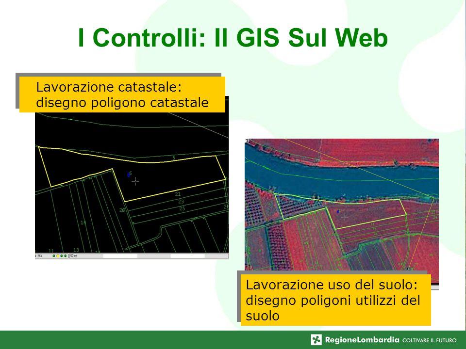I Controlli: Il GIS Sul Web Lavorazione catastale: disegno poligono catastale Lavorazione uso del suolo: disegno poligoni utilizzi del suolo
