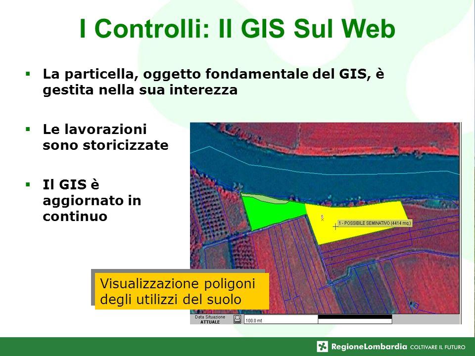 Visualizzazione poligoni degli utilizzi del suolo I Controlli: Il GIS Sul Web La particella, oggetto fondamentale del GIS, è gestita nella sua interez