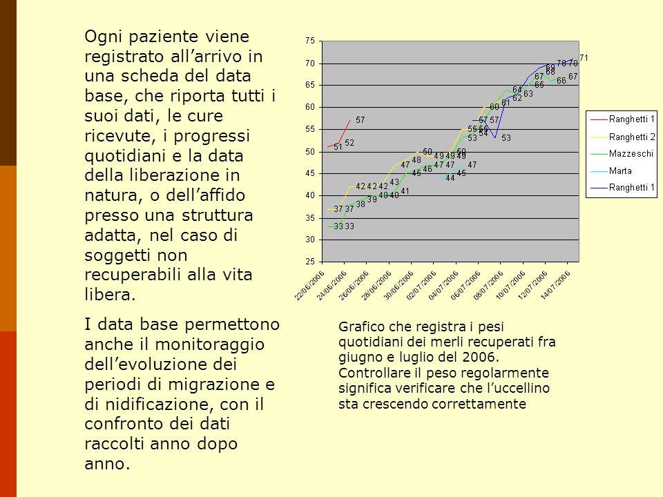 Ogni paziente viene registrato allarrivo in una scheda del data base, che riporta tutti i suoi dati, le cure ricevute, i progressi quotidiani e la dat