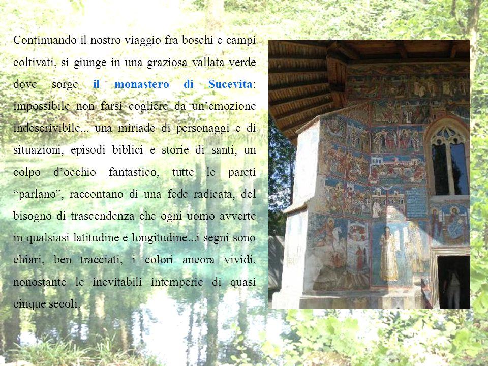 Continuando il nostro viaggio fra boschi e campi coltivati, si giunge in una graziosa vallata verde dove sorge il monastero di Sucevita: impossibile n