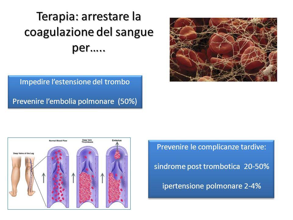 Terapia: arrestare la coagulazione del sangue per….. Impedire lestensione del trombo Prevenire lembolia polmonare (50%) Impedire lestensione del tromb