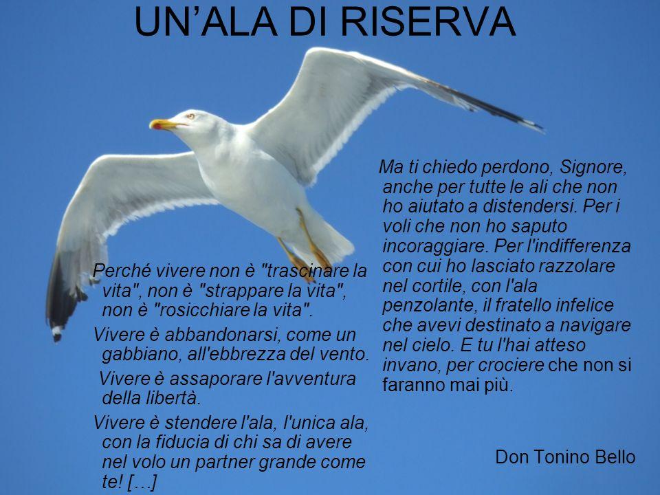 Don Tonino Bello, pur non avendolo potuto conoscere, possiamo considerarlo un MAESTRO DI VITA, che ognuno di noi debba seguire.
