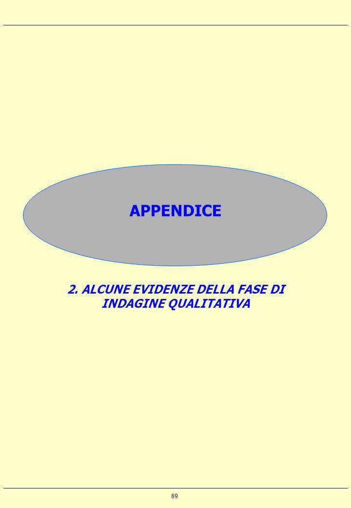 89 APPENDICE 2. ALCUNE EVIDENZE DELLA FASE DI INDAGINE QUALITATIVA
