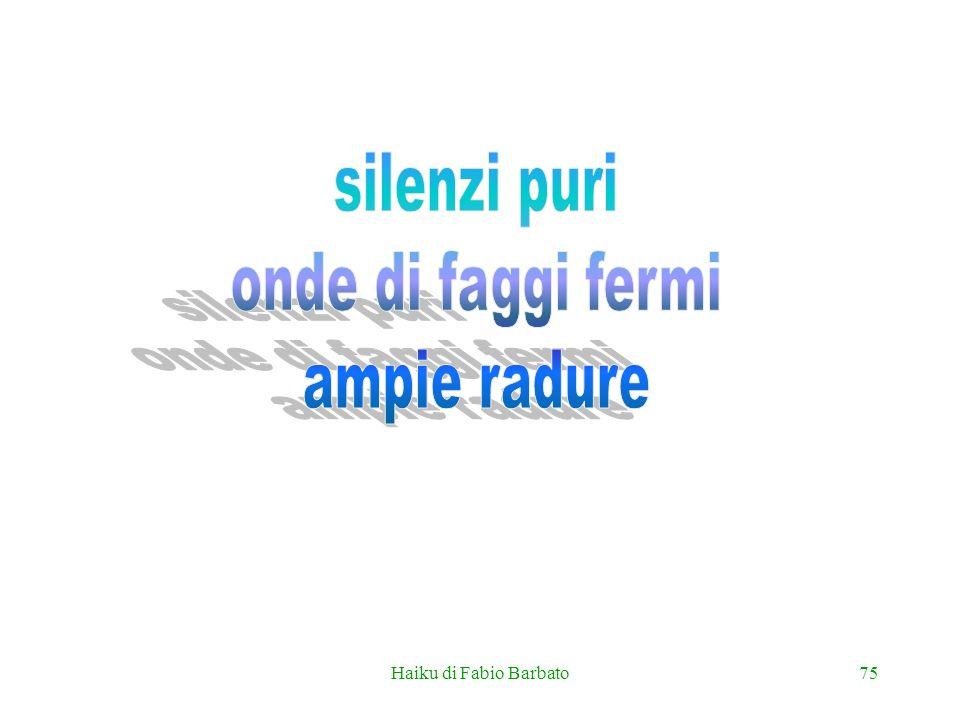Haiku di Fabio Barbato75