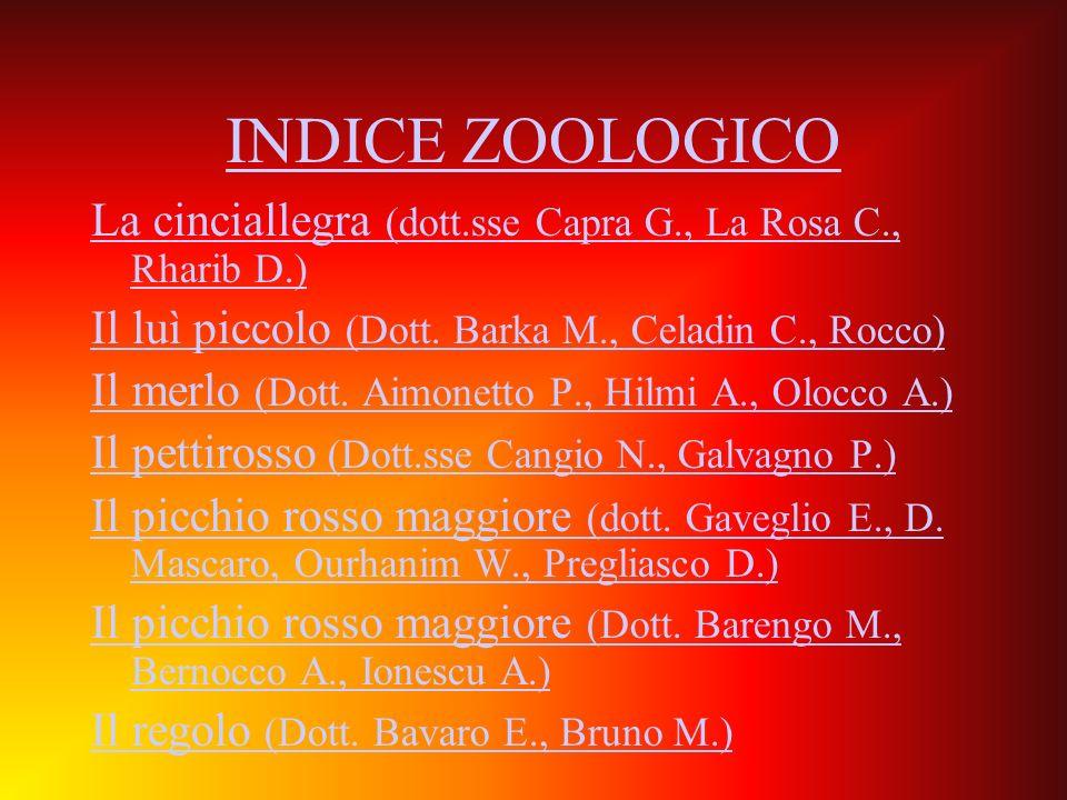INDICE ZOOLOGICO La cinciallegra (dott.sse Capra G., La Rosa C., Rharib D.) Il luì piccolo (Dott. Barka M., Celadin C., Rocco) Il merlo (Dott. Aimonet
