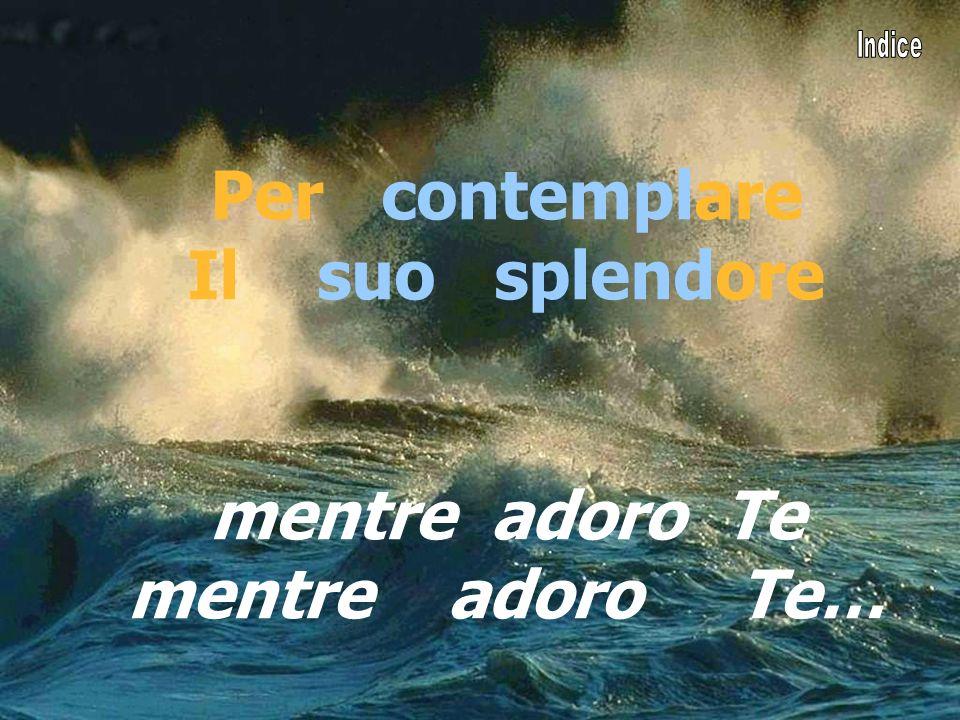 Cantiamo insieme Per contemplare Il suo splendore mentre adoro Te mentre adoro Te…
