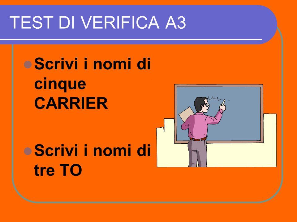 TEST DI VERIFICA A2 Rispondi alle seguenti domande: 1 ) Chi stabilisce il prezzo di un volo di linea .