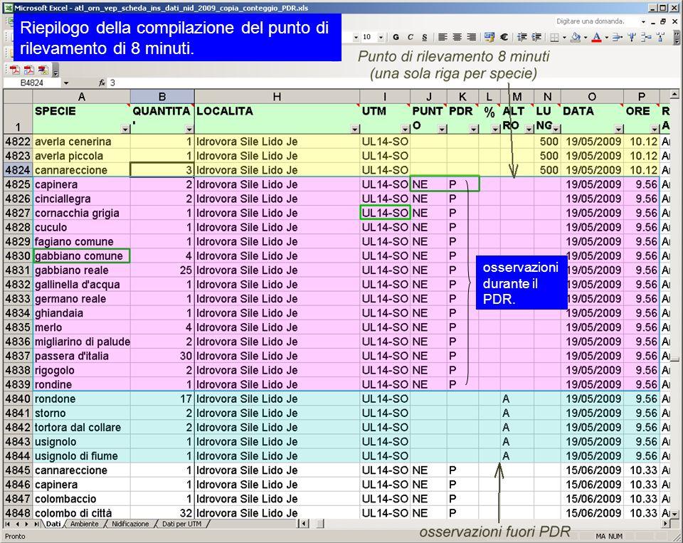 Riepilogo della compilazione del punto di rilevamento di 8 minuti. osservazioni durante il PDR.