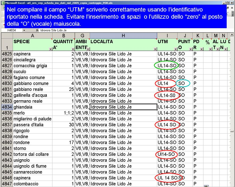 Nel compilare il campo UTM scriverlo correttamente usando lidentificativo riportato nella scheda. Evitare linserimento di spazi o lutilizzo dello zero