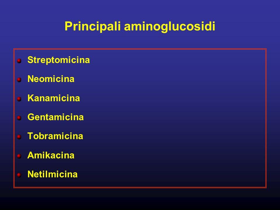 Principali aminoglucosidi Streptomicina Neomicina Kanamicina Gentamicina Tobramicina Amikacina Netilmicina