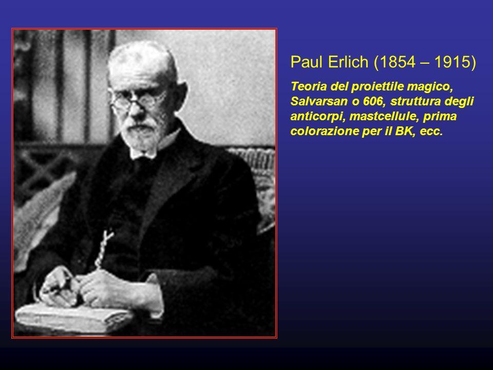 Paul Erlich (1854 – 1915) Teoria del proiettile magico, Salvarsan o 606, struttura degli anticorpi, mastcellule, prima colorazione per il BK, ecc.