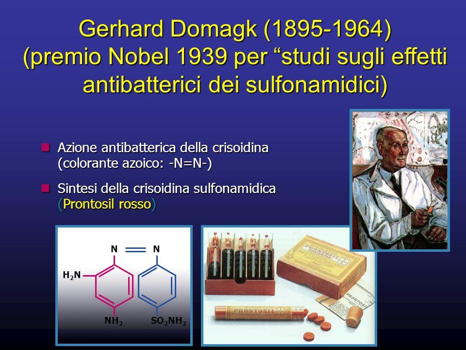 Gerhard Domagk (1895-1964) (premio Nobel 1939 per studi sugli effetti antibatterici dei sulfonamidici) Azione antibatterica della crisoidina (colorant
