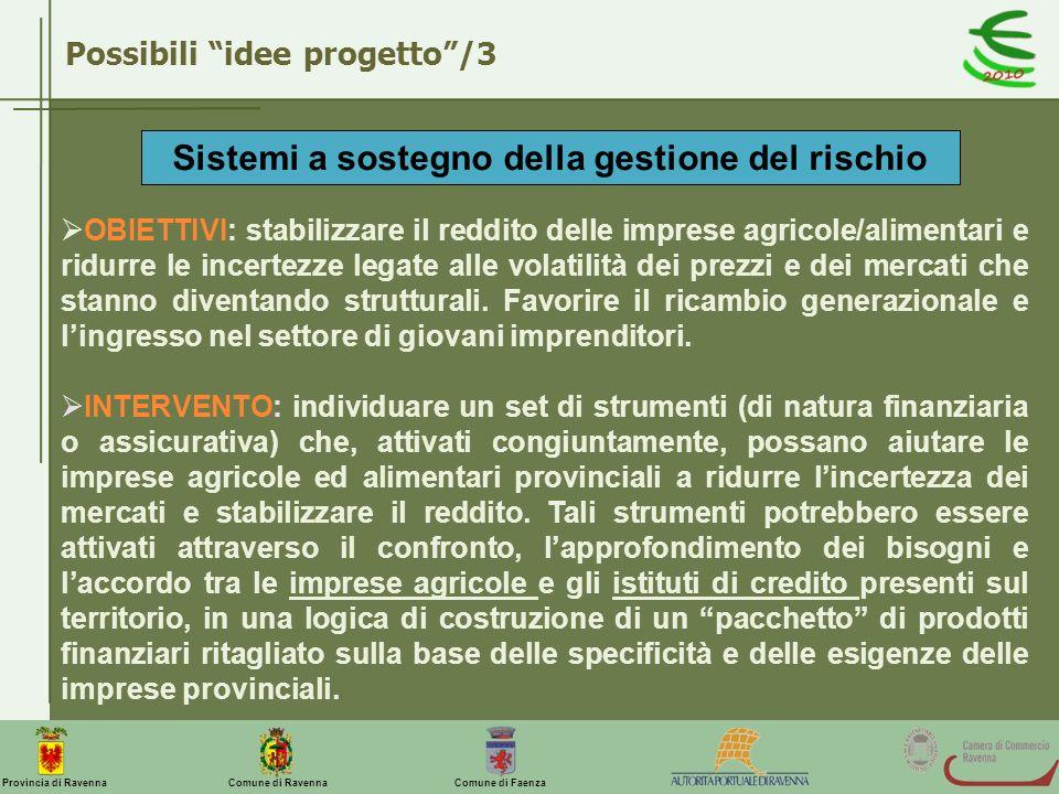 Comune di Ravenna Comune di FaenzaProvincia di Ravenna Possibili idee progetto/3 Sistemi a sostegno della gestione del rischio OBIETTIVI: stabilizzare