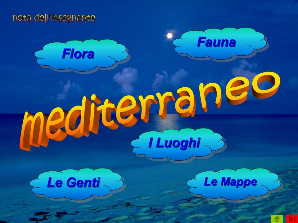 Flora Le Genti Le Genti Le Genti Le Genti I Luoghi I Luoghi I Luoghi I Luoghi Fauna Le Mappe Le Mappe Le Mappe Le Mappe