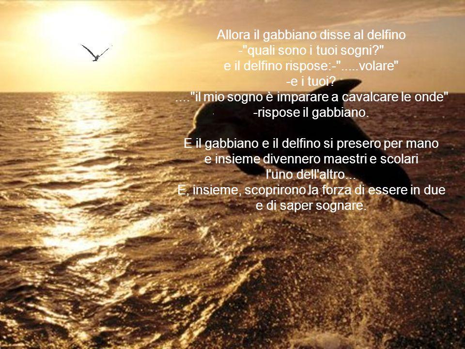 Allora il gabbiano disse al delfino - quali sono i tuoi sogni? e il delfino rispose:- .....volare -e i tuoi?.... il mio sogno è imparare a cavalcare le onde -rispose il gabbiano.