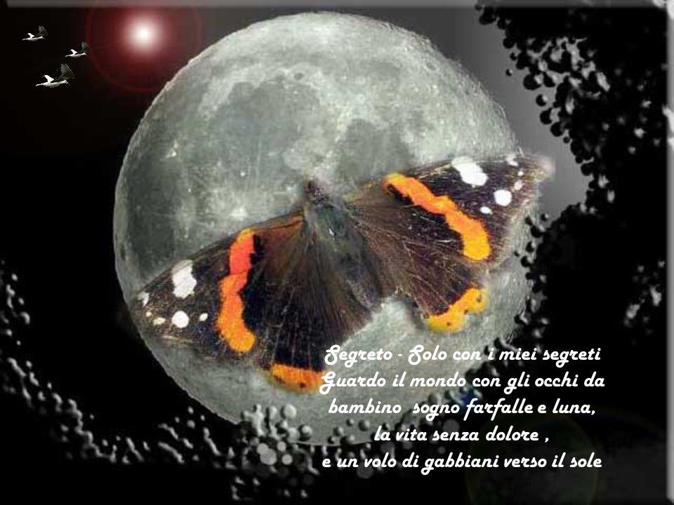 Segreto - Solo con i miei segreti Guardo il mondo con gli occhi da bambino sogno farfalle e luna, la vita senza dolore, e un volo di gabbiani verso il sole