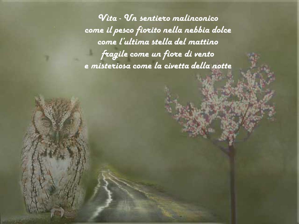 Vita - Un sentiero malinconico come il pesco fiorito nella nebbia dolce come lultima stella del mattino fragile come un fiore di vento e misteriosa come la civetta della notte