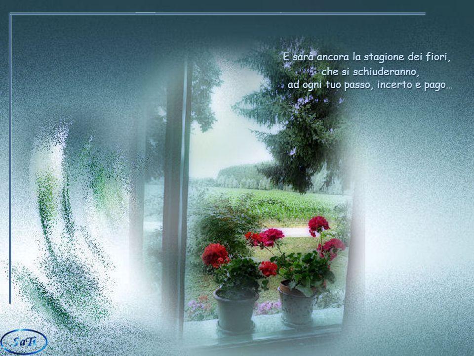Un giorno le gemme sui rami spogli, si apriranno e i nidi nascosti e silenziosi, e i nidi nascosti e silenziosi, si riempiranno di rostri famelici, di voli impauriti e inattesi… E sarà ancora la stagione dei fiori, che si schiuderanno, ad ogni tuo passo, incerto e pago…