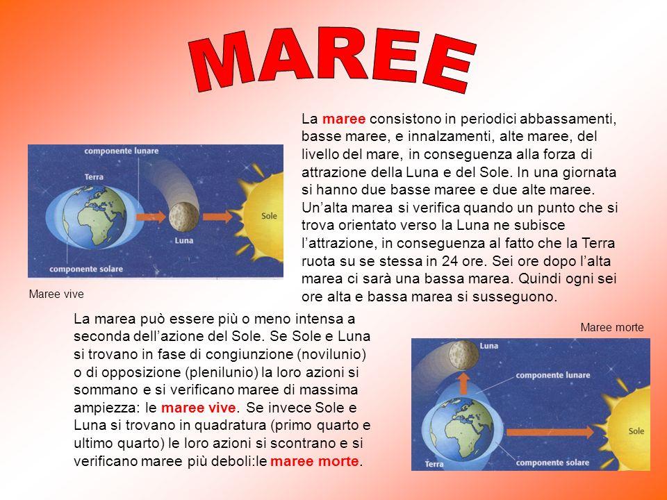 La maree consistono in periodici abbassamenti, basse maree, e innalzamenti, alte maree, del livello del mare, in conseguenza alla forza di attrazione della Luna e del Sole.