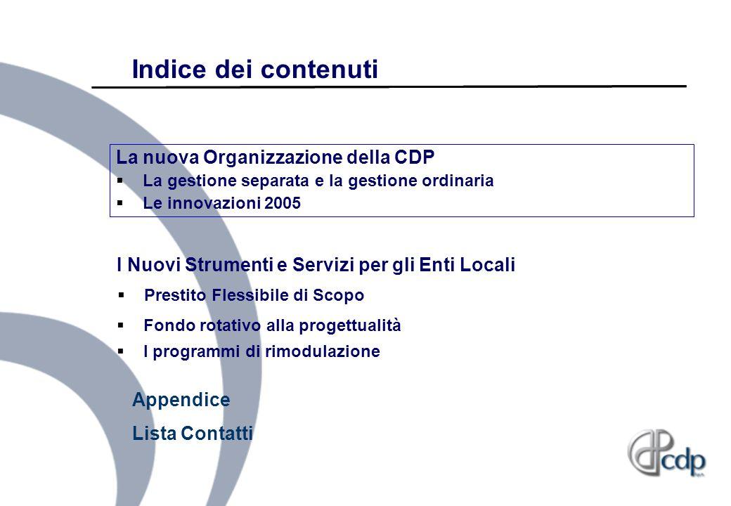 Indice dei contenuti La nuova Organizzazione della CDP La gestione separata e la gestione ordinaria Le innovazioni 2005 Fondo rotativo alla progettual