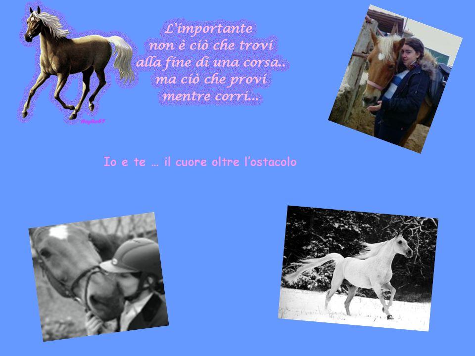 Ciao, sono Claudia, una ragazza di 14 anni che adora gli animali.