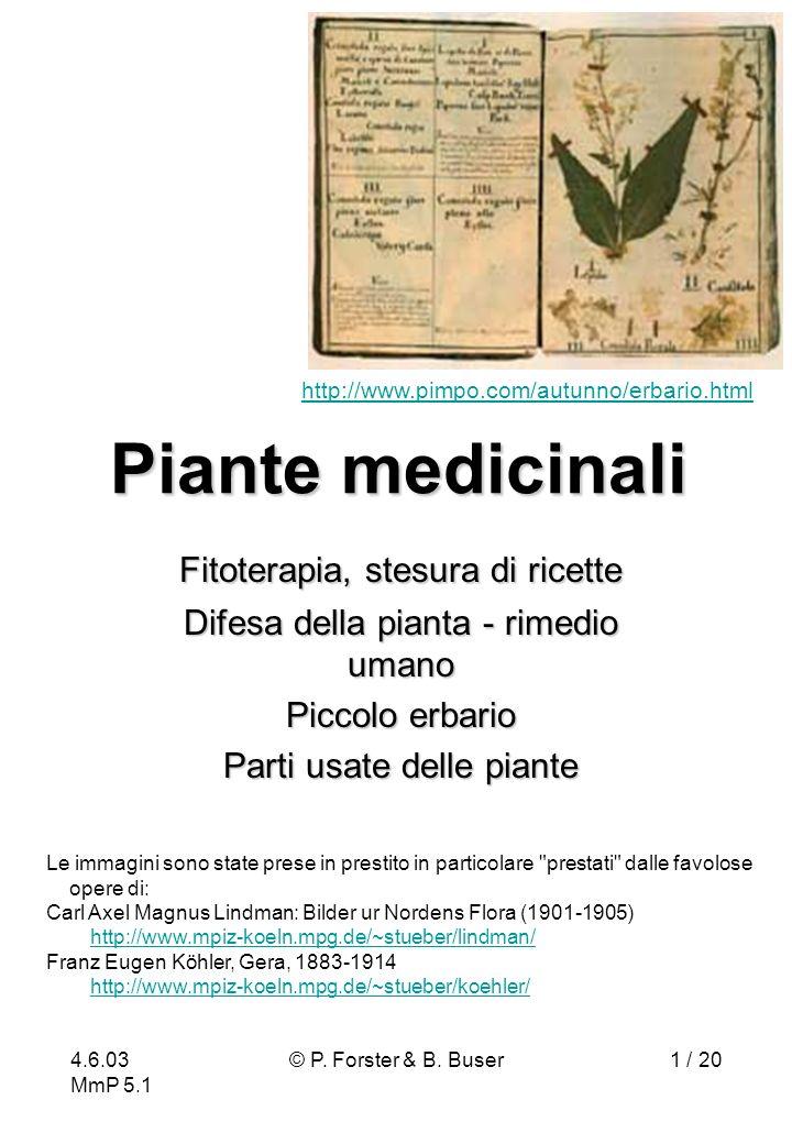 4.6.03 MmP 5.1 © P. Forster & B. Buser1 / 20 Piante medicinali Fitoterapia, stesura di ricette Difesa della pianta - rimedio umano Piccolo erbario Par