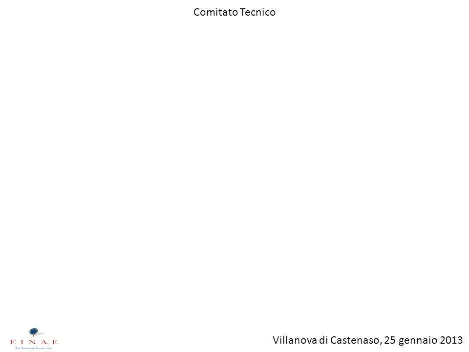 Comitato Tecnico Villanova di Castenaso, 25 gennaio 2013