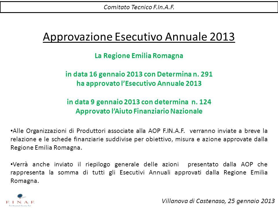 Comitato Tecnico F.In.A.F. Villanova di Castenaso, 25 gennaio 2013 Approvazione Esecutivo Annuale 2013 La Regione Emilia Romagna in data 16 gennaio 20