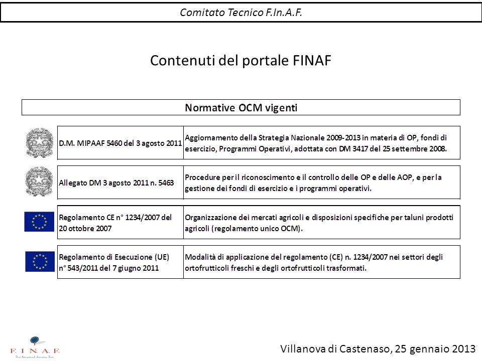 Villanova di Castenaso, 25 gennaio 2013 Contenuti del portale FINAF Comitato Tecnico F.In.A.F.