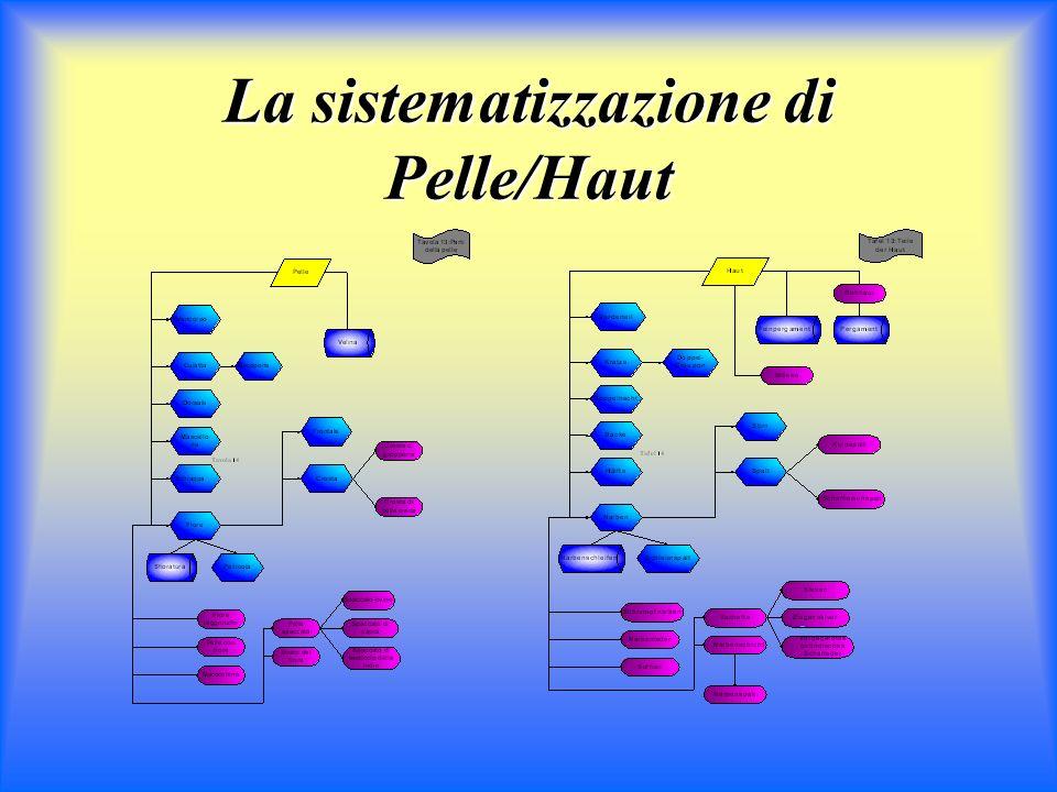 Sistematizzazione Sistemi concettuali it/de non sovrapponibili