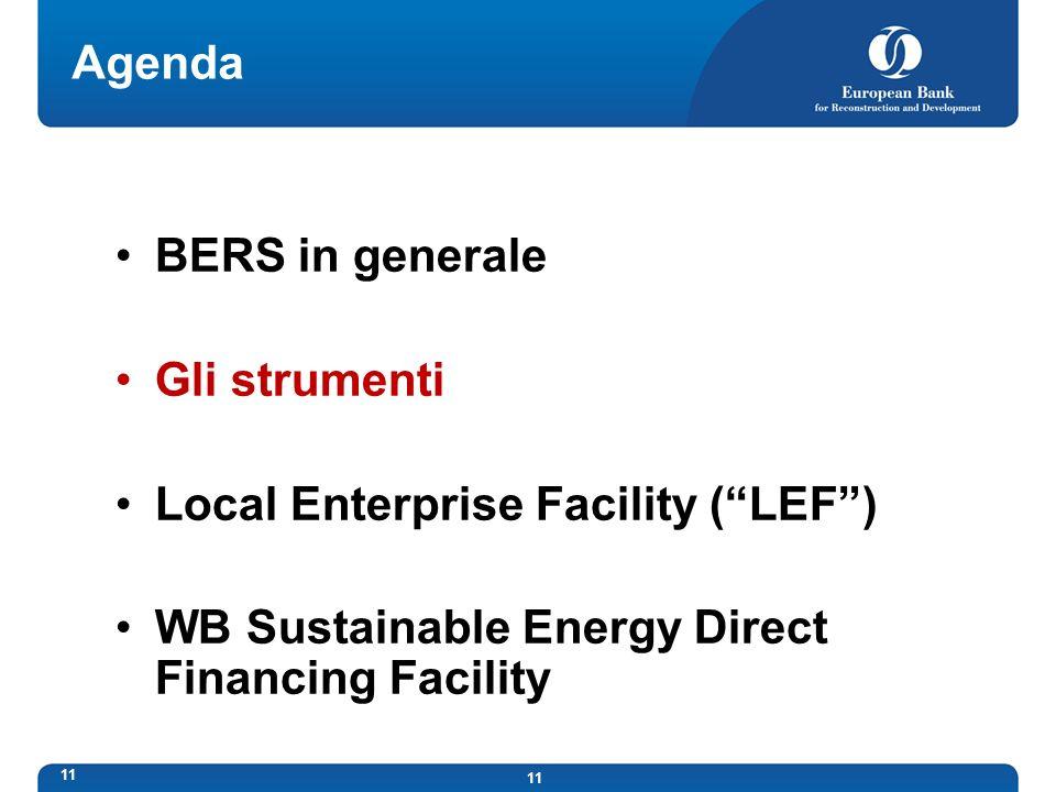 11 Agenda BERS in generale Gli strumenti Local Enterprise Facility (LEF) WB Sustainable Energy Direct Financing Facility