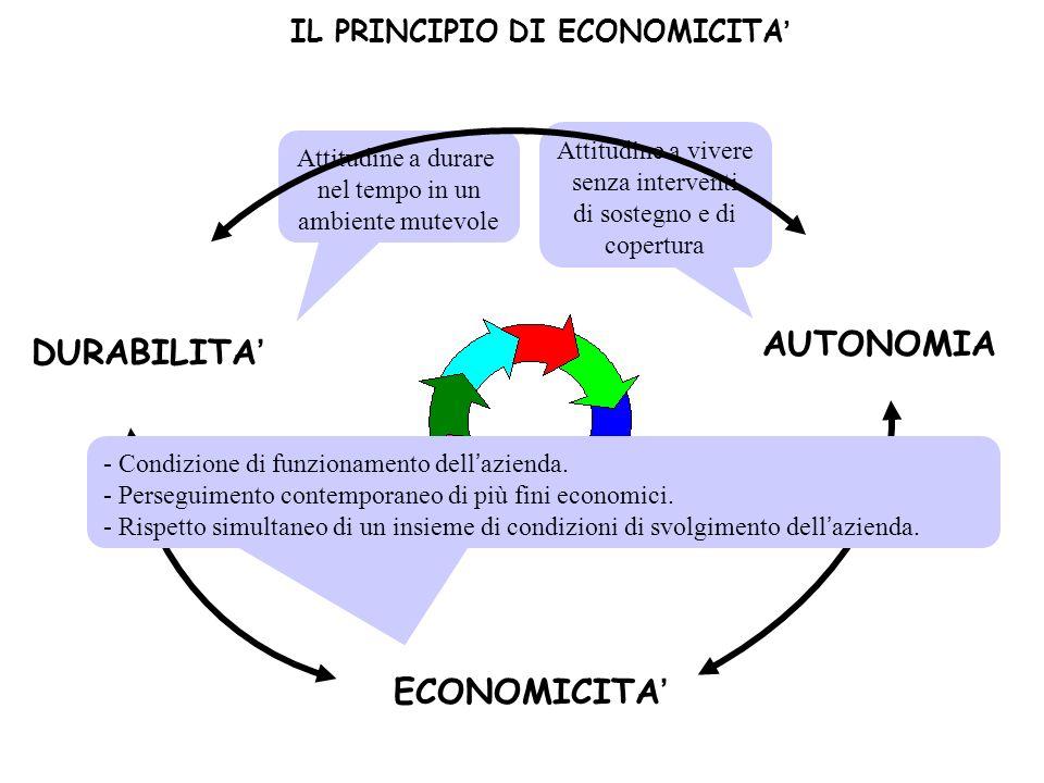 DURABILITA ECONOMICITA AUTONOMIA Attitudine a vivere senza interventi di sostegno e di copertura Attitudine a durare nel tempo in un ambiente mutevole IL PRINCIPIO DI ECONOMICITA - Condizione di funzionamento dellazienda.
