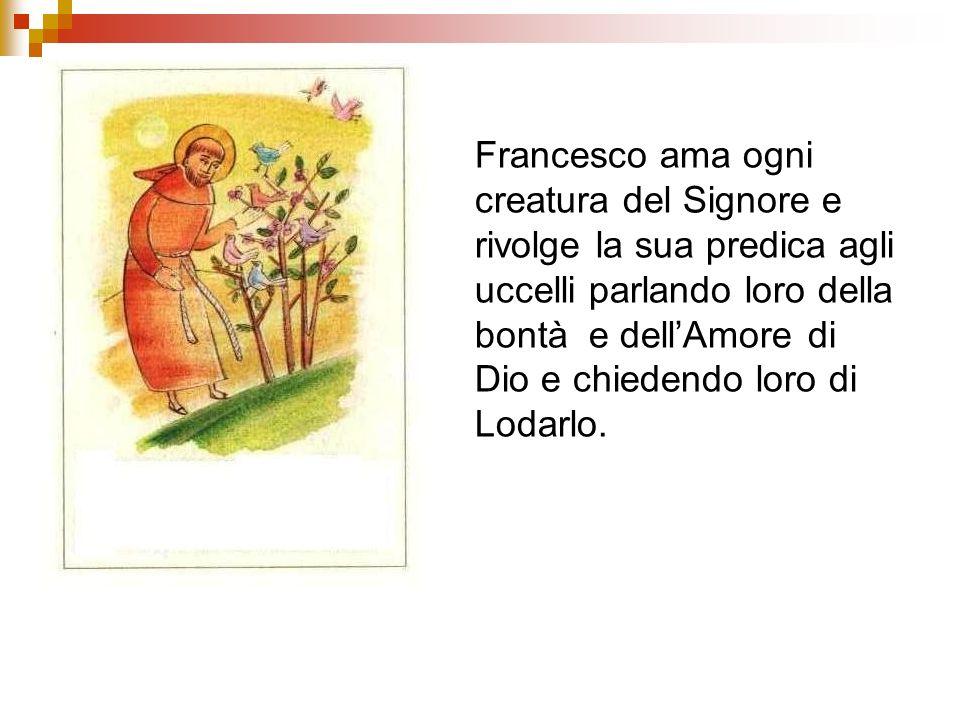 Francesco ama ogni creatura del Signore e rivolge la sua predica agli uccelli parlando loro della bontà e dellAmore di Dio e chiedendo loro di Lodarlo
