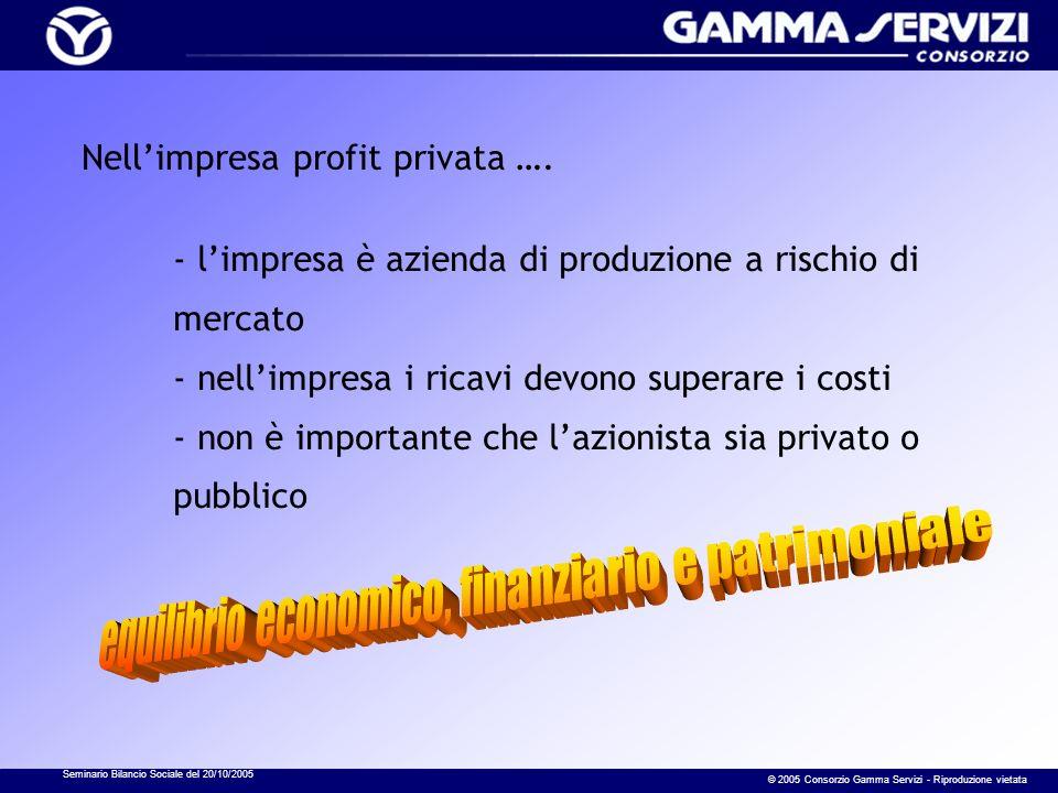 Seminario Bilancio Sociale del 20/10/2005 © 2005 Consorzio Gamma Servizi - Riproduzione vietata Nellimpresa profit privata …. - limpresa è azienda di