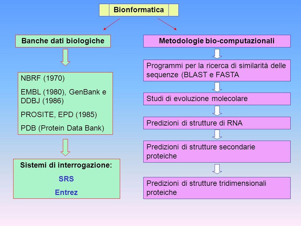 Bionformatica Banche dati biologiche NBRF (1970) EMBL (1980), GenBank e DDBJ (1986) PROSITE, EPD (1985) PDB (Protein Data Bank) Sistemi di interrogazi