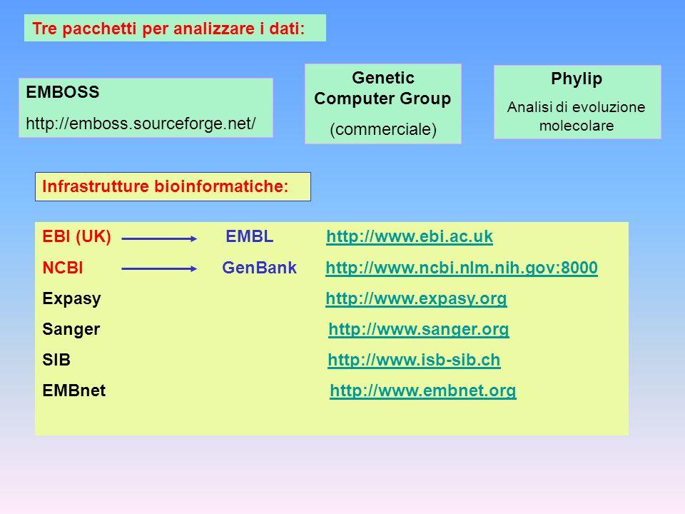 Tre pacchetti per analizzare i dati: EMBOSS http://emboss.sourceforge.net/ Genetic Computer Group (commerciale) Phylip Analisi di evoluzione molecolar