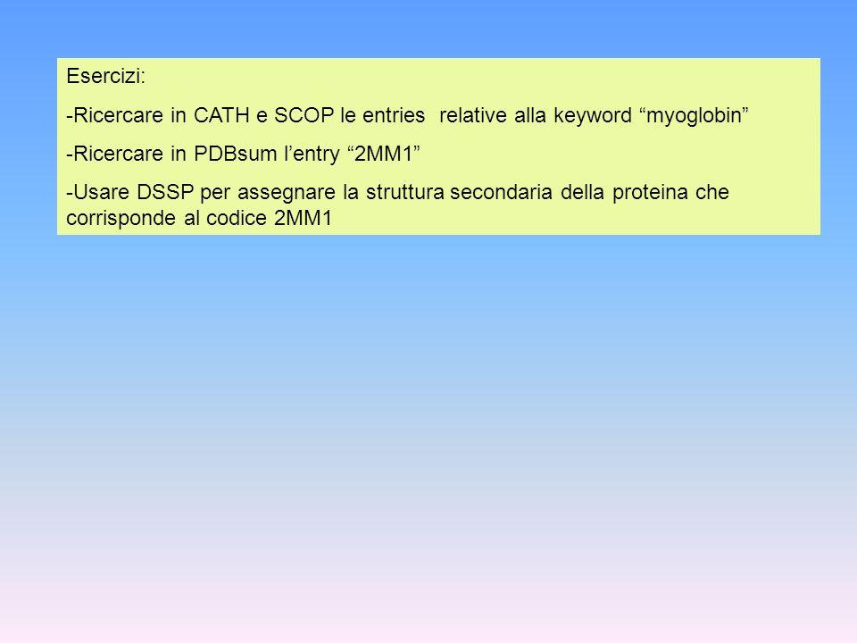 Esercizi: -Ricercare in CATH e SCOP le entries relative alla keyword myoglobin -Ricercare in PDBsum lentry 2MM1 -Usare DSSP per assegnare la struttura